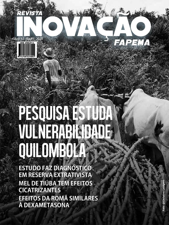 Revista Inovacao 39 - 2020_V3-1